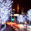 Photos: けやき坂の夜