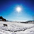 雪の公園にて