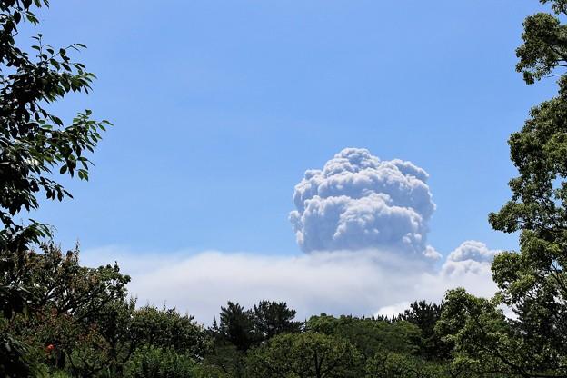 桜島の噴煙