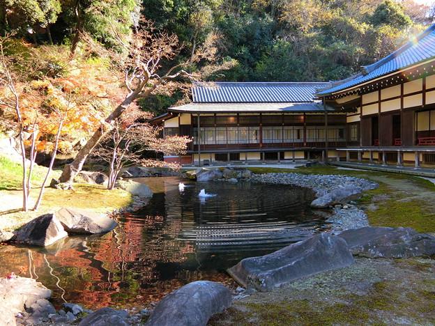 円覚寺境内の紅葉(4) 方丈庭園の裏