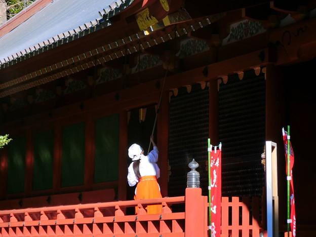 鶴岡八幡宮(3) 巫女さんが煤払い中