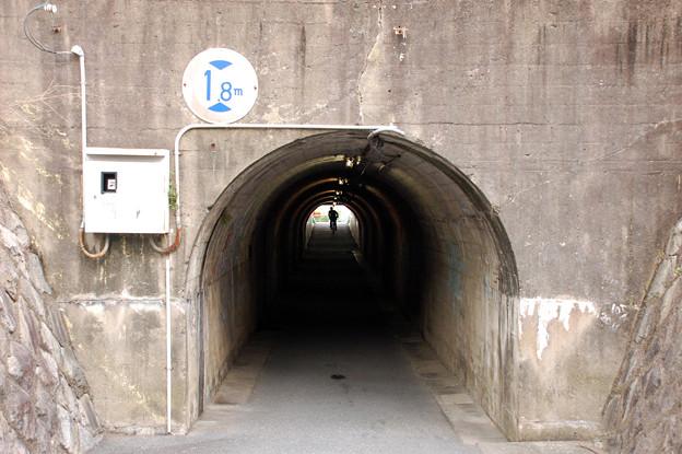 Photos: 炭鉱引込み線 その2