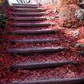 写真: 優しい階段