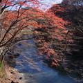 写真: 諏訪峡