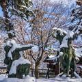 写真: 雪信玄vs雪謙信