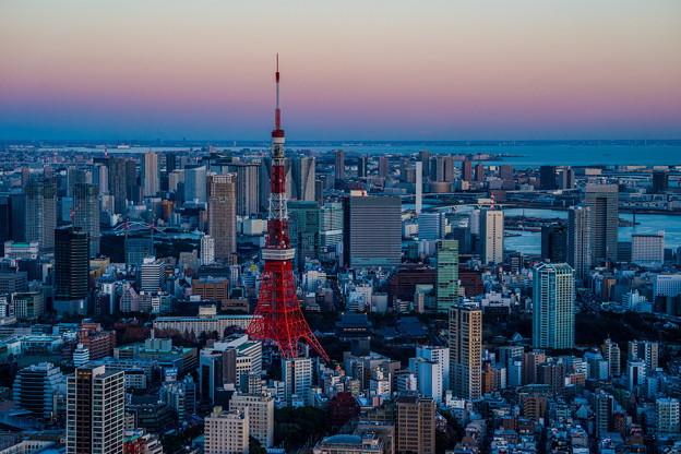 夕焼け 東京タワー