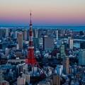 写真: 夕焼け 東京タワー