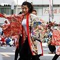 写真: 煌_05 - 第10回 東京よさこい