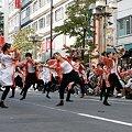写真: 煌_09 - 第10回 東京よさこい