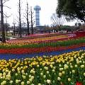木曽三川公園センター (19)