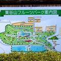 東谷山フルーツパーク (2)