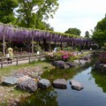 曼陀羅寺公園 (1)