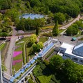 花フェスタ記念公園 (1)