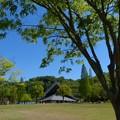 花フェスタ記念公園 (2)