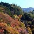 付知峡・宮の上橋付近 (4)