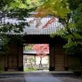 妙興寺 (1)総門