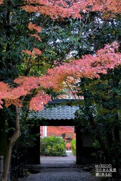 写真: 妙興寺 (4)