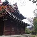 写真: 妙興寺 (45)