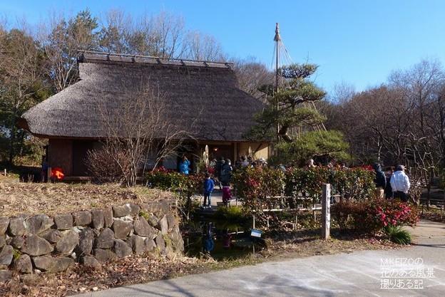 木曽川水園 (5)