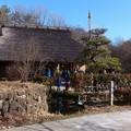 写真: 木曽川水園 (5)