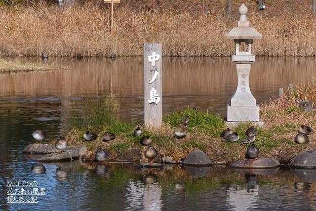 木曽川水園 (21)