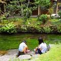 写真: 水遊び