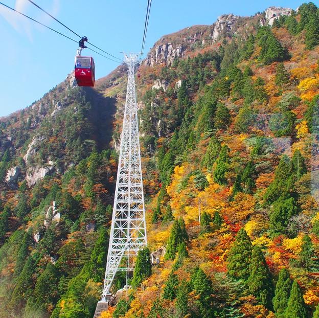 秋色と日本一