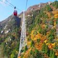 写真: 秋色と日本一