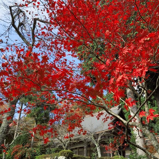 写真: 石道寺