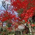 Photos: 石道寺