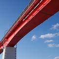 写真: 中の島大橋 (1)
