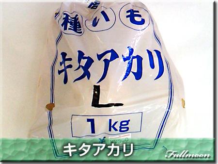 Photos: 02キタアカリ