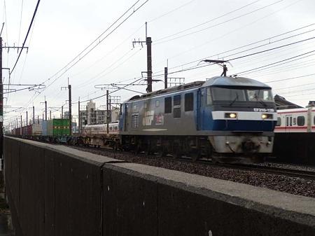DSCN1973