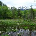 Photos: 乗鞍岳の周辺漫歩