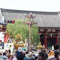 写真: 浅草三社祭