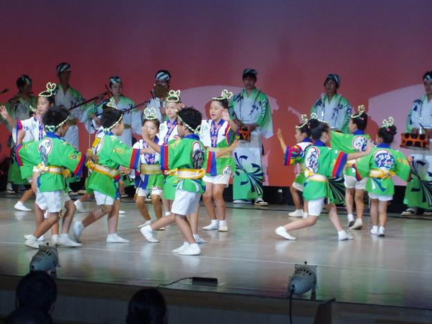 Photos: 阿波踊り