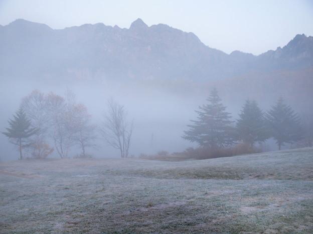 早朝の霧そして霜