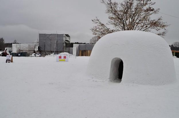 冬の小岩井農場まきば園 2