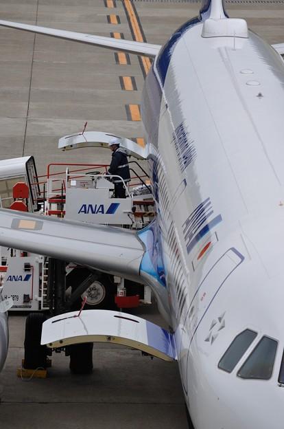 ANA A321ceo 秋田空港 17-10-06 15-10