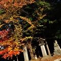 Photos: 盛岡八幡宮 12
