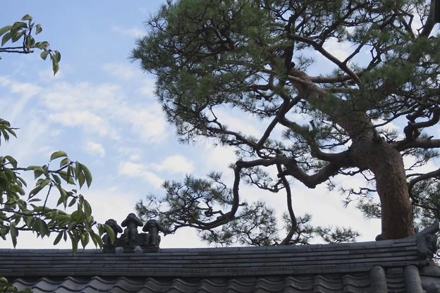 八坂庚申堂の屋根~♪