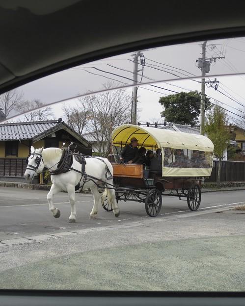 湯布院の馬車~♪