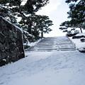 雪景色の霞ヶ城-06100