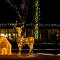 道の駅クリスマス-06068
