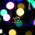 道の駅クリスマス-06062