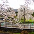 写真: 角館武家屋敷-01433
