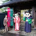 写真: 角館武家屋敷-01389