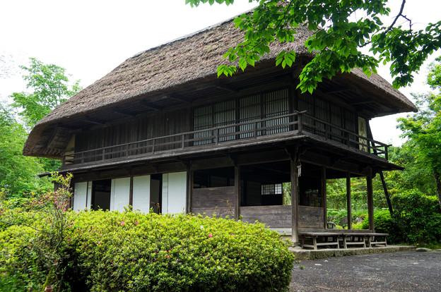 日本の夏-01546