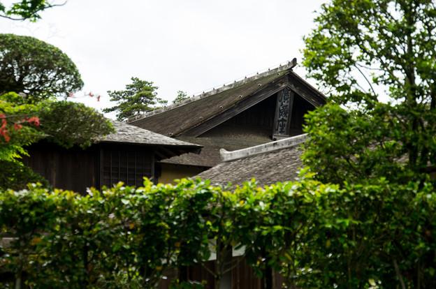 日本の夏-01561