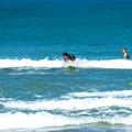 写真: 海の日サーフィン-01890